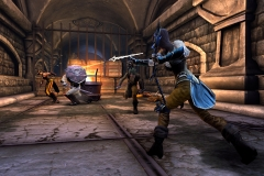 Neverwinter_Devoted_Cleric-3