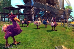 raiderz_assassin_update_screenshot_007