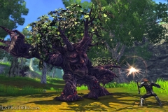 raiderz_assassin_update_screenshot_020