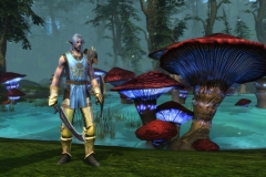 rift_collectorsedition_tabard_v114