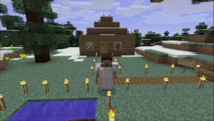 Minecraft PS3 Edition (3)