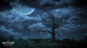 The_Witcher_3_Wild_Hunt_Hanged_Man's_Tree